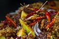 ยำส้มฉุน ; Yam Sohm Choon - Mango Salad with Sweet Pork Condiment, Fermented Shrimp Paste, Shallots, and Crispy Deep-Fried Fluffy Fish