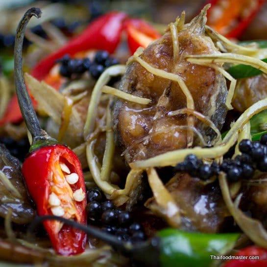 Thai Spicy Catfish Recipe: A fabulous Thai spicy catfish recipe of crispy catfish stir fried with wild ginger and fresh peppercorns.