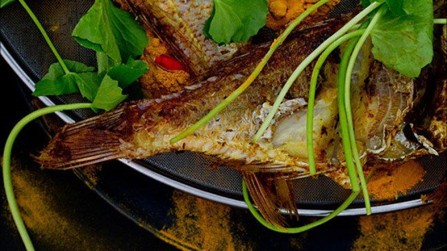 Thai Fried Fish RecipeSouthern Thai Style Deep Fried Fish with Fresh Turmeric(bplaa saai daaeng thaawt khamin) สูตรทำปลาทรายแดงทอดขมิ้น สูตรปักษ์ใต้