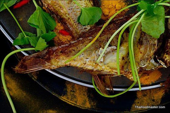 Thai Fried Fish Recipe: Southern Thai Style Deep Fried Fish with Fresh Turmeric