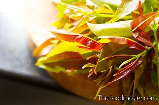 ไตปลาทรงเครื่อง ; Spicy Salad of Grilled Tiger Prawns, Mackerel, Lemongrass and Aromatics with Infused Fermented Fish Innards Dressing
