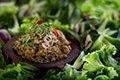Relish of Fermented Fish, Grilled Catfish, Pork and Shrimp<br/>(ปลาร้าผัดทรงเครื่องสูตรสายเยาวภา ; bplaa raa phat sohng khreuuang, suut saai yao wa phaa)